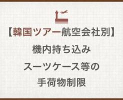 【韓国ツアー航空会社別】機内持ち込みスーツケース等の手荷物制限