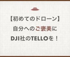【初めてのドローン】自分へのご褒美にDJI社のtelloを!