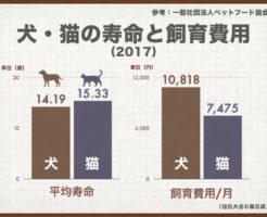 犬・猫の寿命と飼育費用